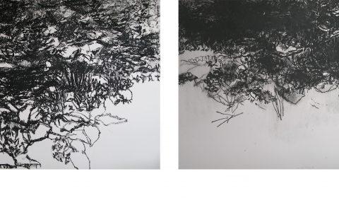 Wasser – im Blick zeitgenössischer Künstler im Museum Biberach