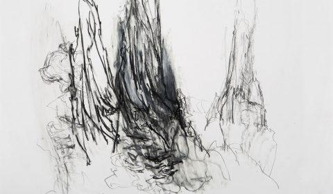 im großen Trauben, 19. 10. 2012, Bleistift und Ölpastell auf Papier, 36,5 x 51 cm © Dieter Konsek