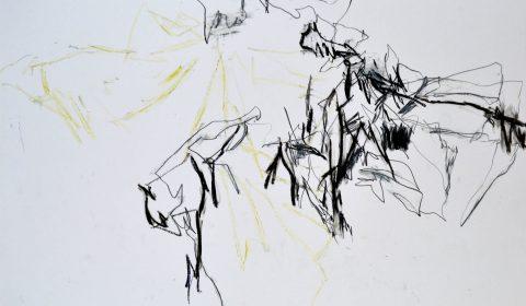18. 6. 2018, Ölpastell und Bleistift auf Papier, 36,5 x 51 cm © Dieter Konsek
