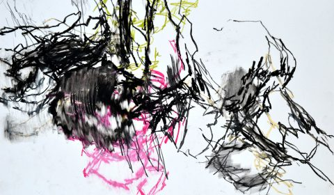 4. 7. 2018, Ölpastell und Bleistift auf Papier, 36,5 x 51 cm © Dieter Konsek